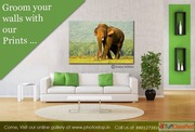 Looking for Fine Art Printing in Bangalore?